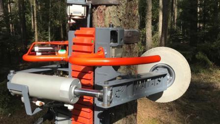 老外发明的机器, 10秒修剪一棵树, 再高的大树也能咔嚓搞定!
