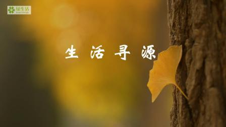 《生活寻源1: 大河天上来》: 黄河之美尽在源头