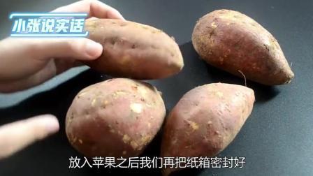 天冷红薯不容易保存? 教你一招, 红薯越放越甜, 保存一年都不会坏