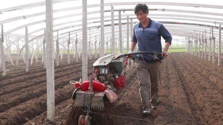 农村种菜大叔用的啥神器? 一亩地竟然省好多钱, 3个人工都不如它