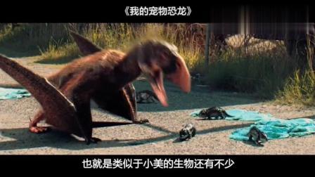 小男孩养了个奇怪的宠物, 长大后竟然发现是恐龙, 惊动了军方