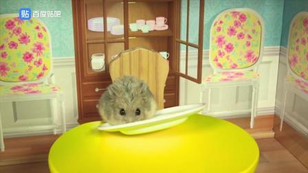 单身贵鼠, 摩登女郎。可爱的小仓鼠每天过的精致的生活。有趣。