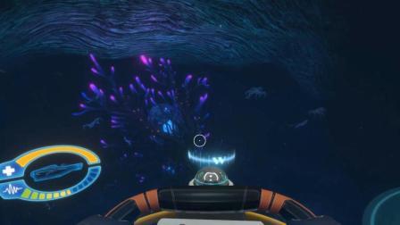 深海迷航第22期: 历经千辛万苦终于来到了生命之树!