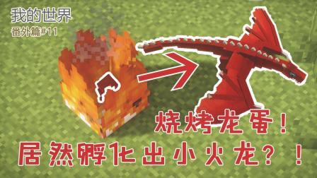 我的世界番外篇11: 冰与火之歌! 教你孵化冰龙与火龙, 还能骑乘!