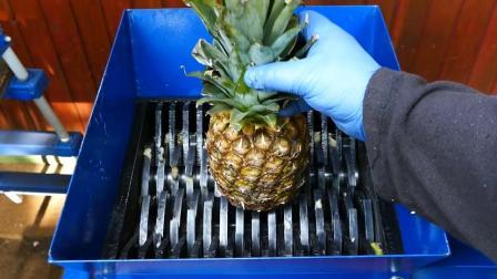 粉碎机的威力有多大? 看这些水果的下场就知道了, 太厉害了!