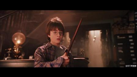 哈利波特混剪: 这些魔法, 你能认出几个