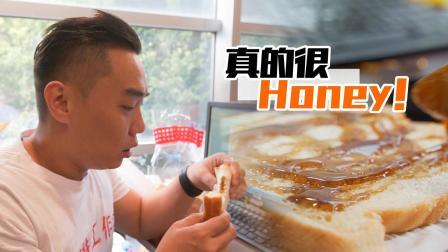 新疆黑蜂酿的蜜, 一天被老板压榨下来就靠它来续命了!