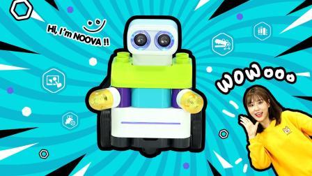 玩具百宝箱 noova智能机器人儿童早教玩具学习编程