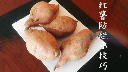 学会这几招, 红薯保存一年都不会烂, 而且越来越甜