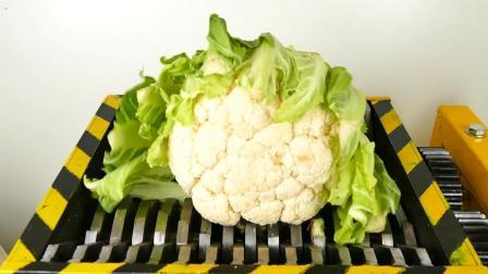 往粉碎机中放一个花菜, 启动粉碎机的开关, 花菜会是什么下场?