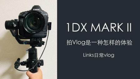 如果你有麒麟臂...那么来试试吧 links的日本留学日常vlog