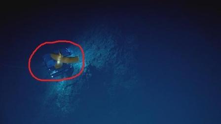 在1万多米的海洋深处, 发现的东西令人不安, 人类该警惕了