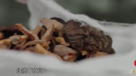《舌尖上的中国3》闽南特色的国际宴席
