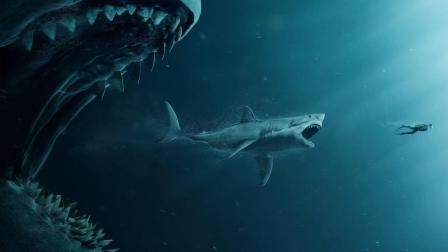 超清: 巨齿鲨有多大, 鲸鱼在它面前显得那么渺小