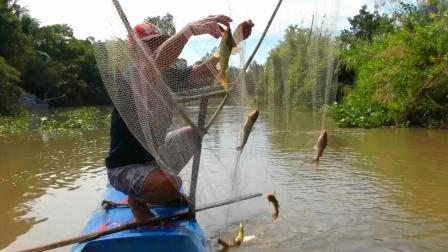 家门口的河流上, 农村大叔用一个大抄网捕鱼, 瞧瞧这些河鲶好大啊