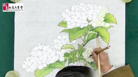 【纯享版】工笔绣球花创作视频欣赏