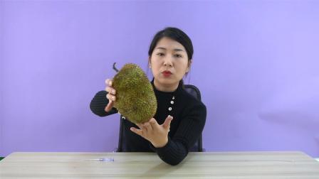 """试吃""""泰国榴莲蜜"""", 挑战一下徒手掰榴莲蜜, 能成功吗?"""