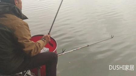 立冬之后天阴冷, 钓友拉饵作钓方法没问题、钓获鲤鱼期待大物出现