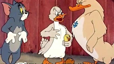 猫和老鼠;汤姆想抓小鸭子, 杰瑞尽力阻止他, 小鸭子命运如何