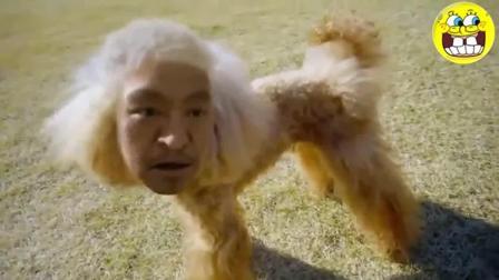 日本奇葩创意广告排行榜第一位, 网友: 这演员得收多少钱才肯拍!
