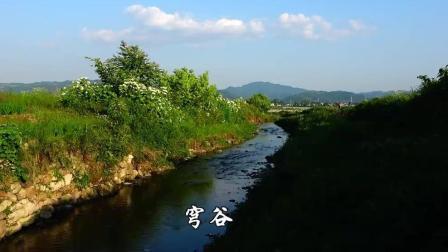 云飞&云朵对唱《天边》高音美到极致 这才是中国好声音