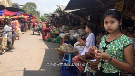 这是缅甸农贸市场, 当地最接地气的地方, 做生意的年轻女孩挺多