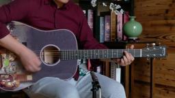 狗狗都地主 马丁吉他限制了你的想象 Martin D16E PD吉他评测