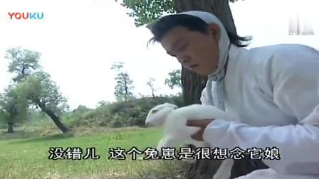 少年张三丰: 张君宝太搞笑, 陪伴多年的鹧鸪仔都不要了