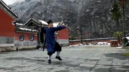武当雪山飞侠, 一场武当八仙剑, 剑法真是精妙!