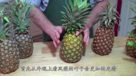 人们口中的菠萝和凤梨, 到底有什么区别? 答案你肯定想不到!