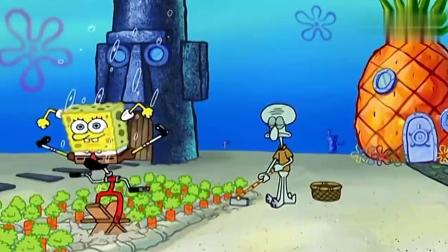 海绵宝宝骑自行车给章鱼哥拔胡萝卜, 章鱼哥还感谢他