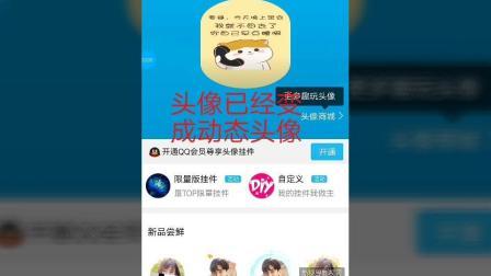 手机QQ自定义想要的视频头像