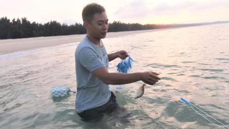 小伙在大海撒了147米长的网, 第一网下去今天晚饭就够饱了