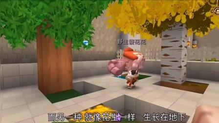 迷你世界: 搞笑邻居3, 真是无心插柳柳成荫, 反而种出一颗黄金树
