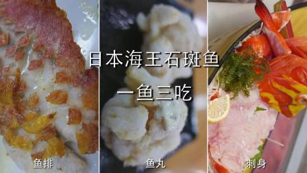 日本冲绳海王石斑鱼颜值高味道美, 一条鱼三种做法, 打造不同的鲜美! 日料极品刺身!