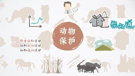 什么是动物保护主义? 你知道还远远不够