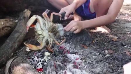 10岁男孩海边求生, 海滩捕捉大螃蟹, 原味烤着吃, 简直太美味了