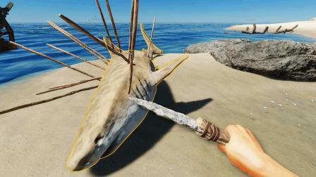 荒岛求生24: 我第一次猎捕鲨鱼, 全身插满矛速度还很快