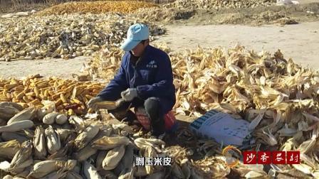 现在最好的玉米多少钱一斤? 大叔剥玉米皮喂羊, 玉米能卖多少钱?