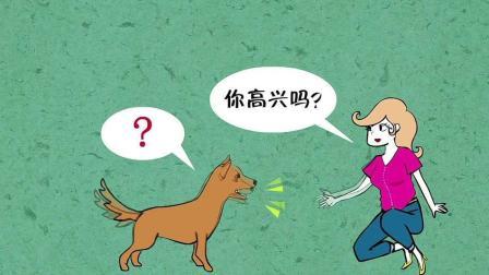 冷知识之, 狗竟也有表情