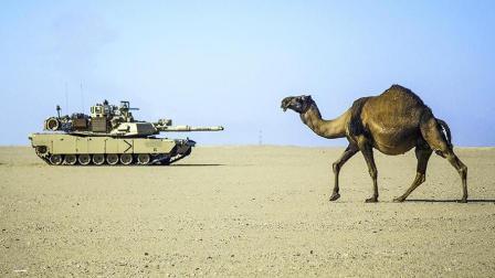 【局势君】沙特是军火商最喜欢的客户, 德国为何要放弃?