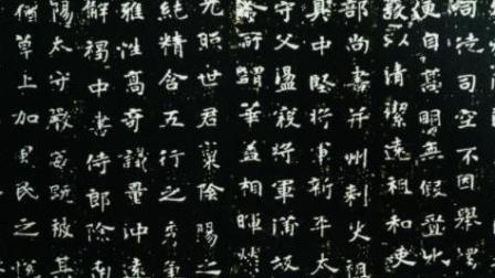 杜中信书法讲堂之(六十七)魏碑张黑女4