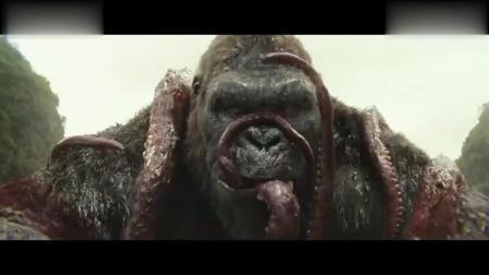 大猩猩霸气手撕鱿鱼 太血腥了