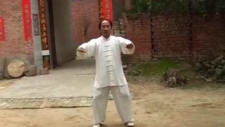 这位高手太极拳风格另类, 堪称当今太极拳界的高人