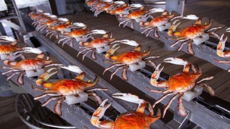 外国发明剥螃蟹机器, 全自动流水线, 中国吃货: 太浪费!