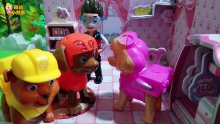 汪汪队玩具故事: 大河马咬了毛毛, 毛毛被痛醒了