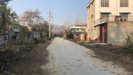 安徽阜阳: 实拍皖北太和县李庄, 水泥路修好了, 村民都住上了楼房