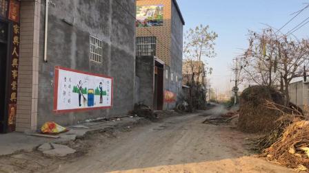实拍安徽阜阳太和县农村, 家家户户都盖起了新楼房, 过上了好日子