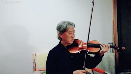小提琴演奏电影《教父》主题曲《温柔的倾述