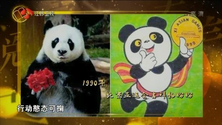 """揭秘""""巴斯""""为何会成为明星大熊猫,它的出现引万人风潮"""